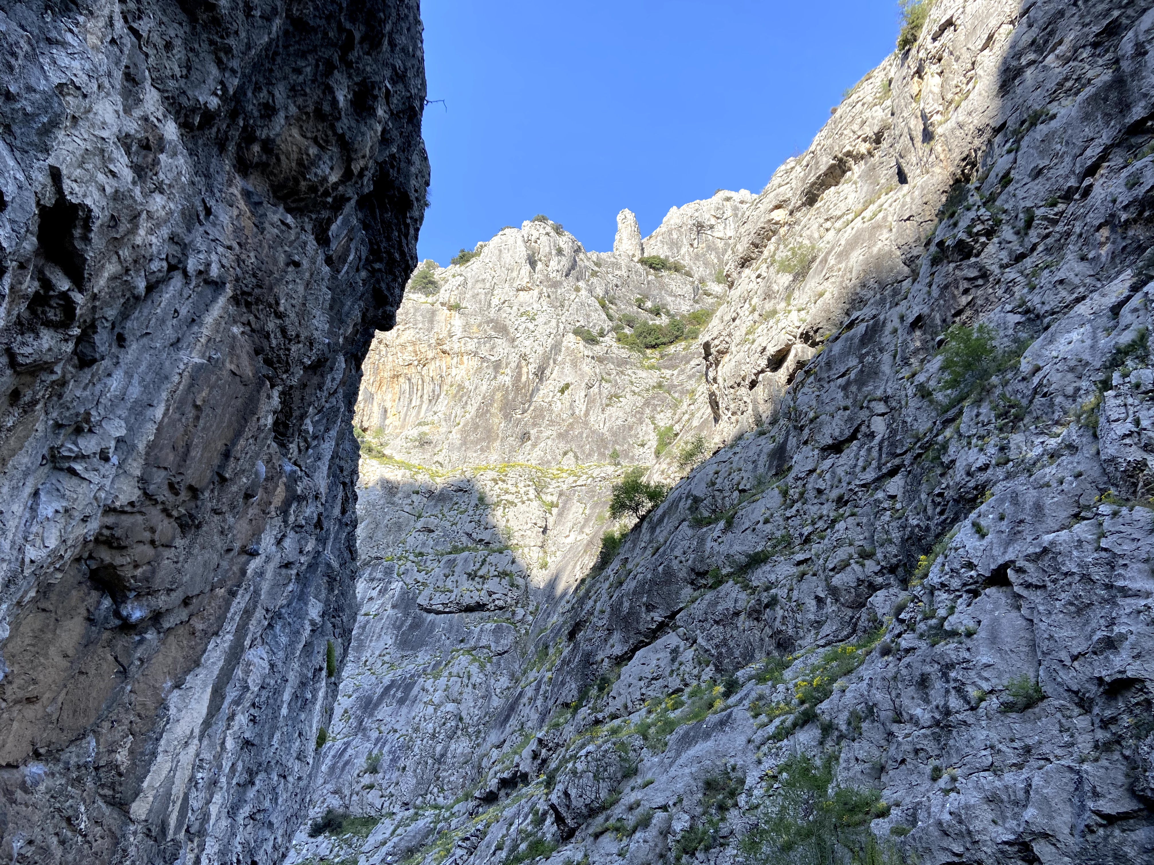 The rocky steep gorge of Demir Kapja. Rock everywhere